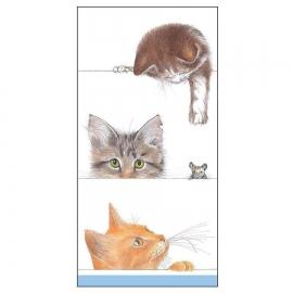 Mouchoir en papier Petits Chats