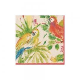 Serviette cocktail perroquets