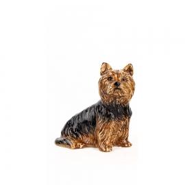 Yorkshire terrier modèle N°1