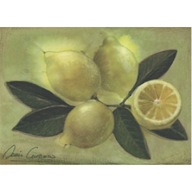 Carte postale - Citrons