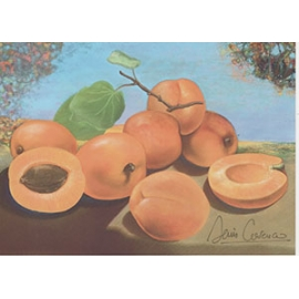Carte postale - Abricots